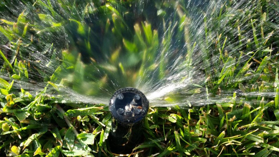 best time for sprinkler