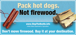 pack hot dogs not firewood