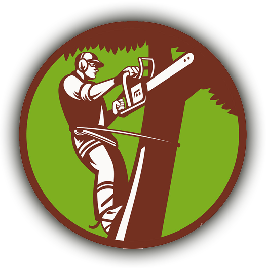 illustration of an arborist engaged in trimming a tree
