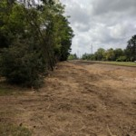 Denver Metro Land Clearing Services